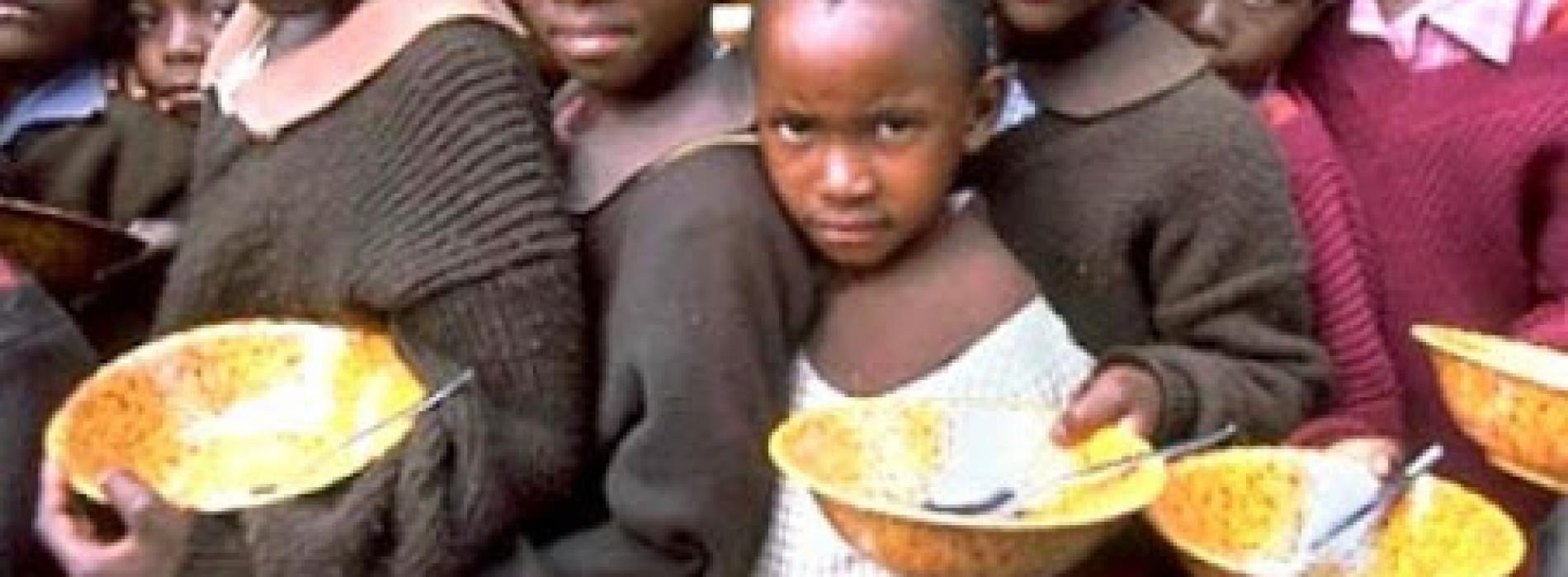 1, 200 children die daily in Nigeria from malnutrition