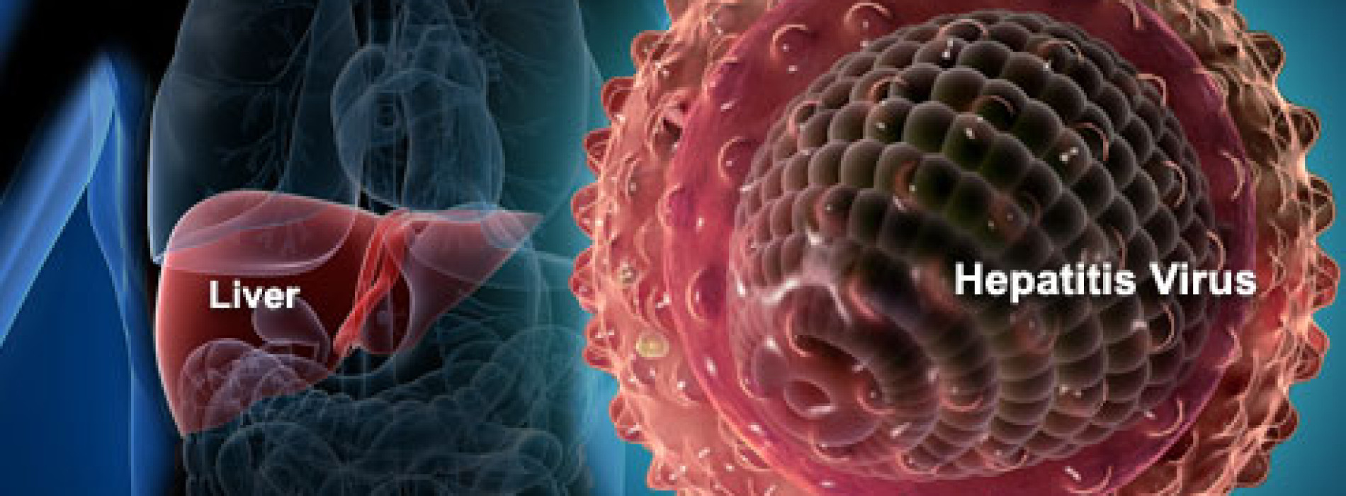 Nigeria launches policy for hepatitis control