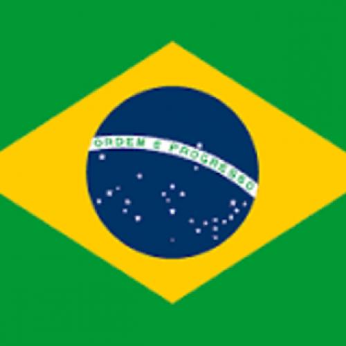Zika virus: WHO backs Brazil for 2016 Olympic