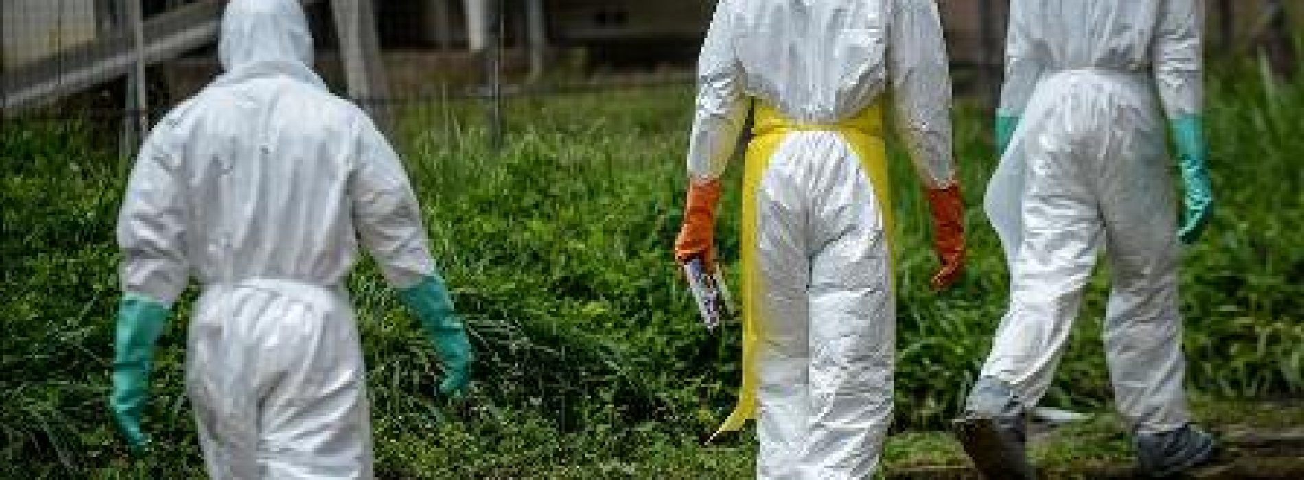 WHO deploys new technology for Ebola fight