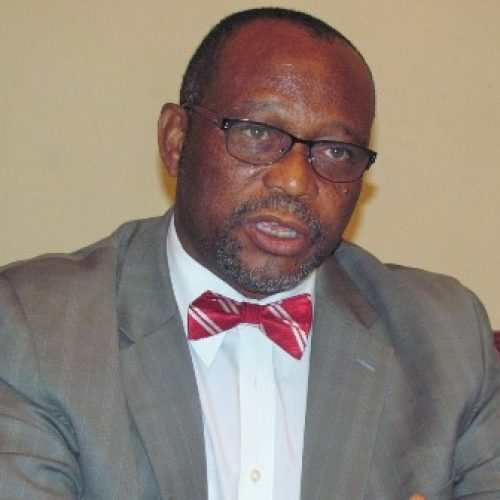 Family Planning: Nigeria is making progress – Ejike Oji