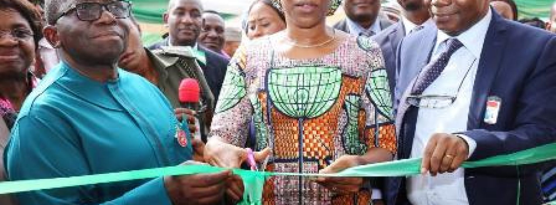 Nigeria's first cancer treatment centre takes off