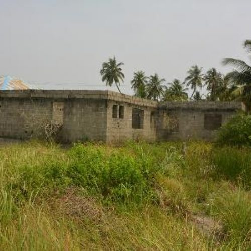 Reptiles take over abandoned Lagos riverine PHC