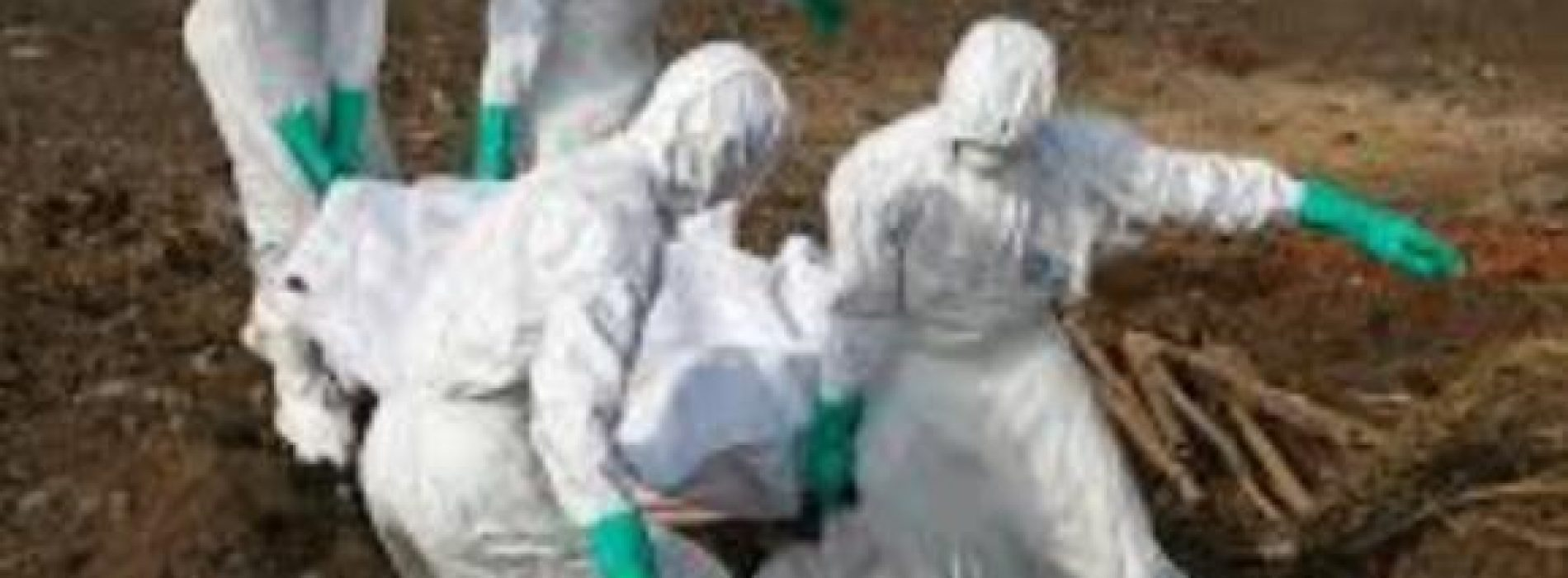Catholic priest infected with Ebola