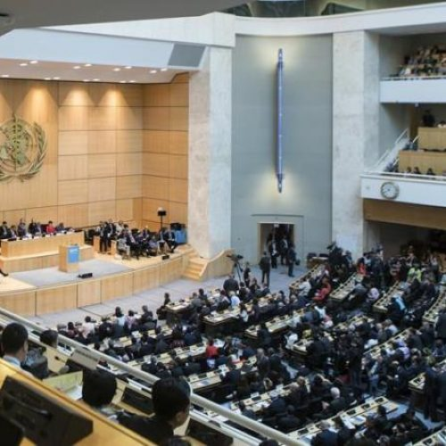 World Health Assembly delegates seal new 5-year strategic plan