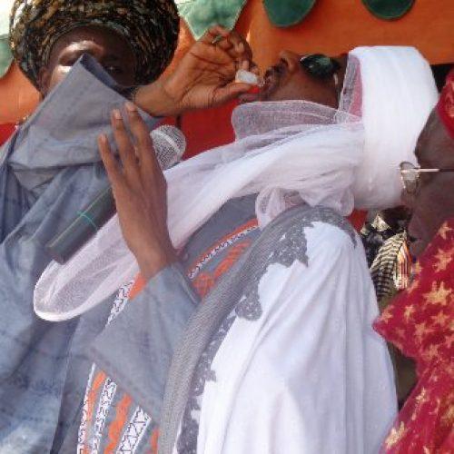 NPHCDA rallies northern traditional rulers on immunisation