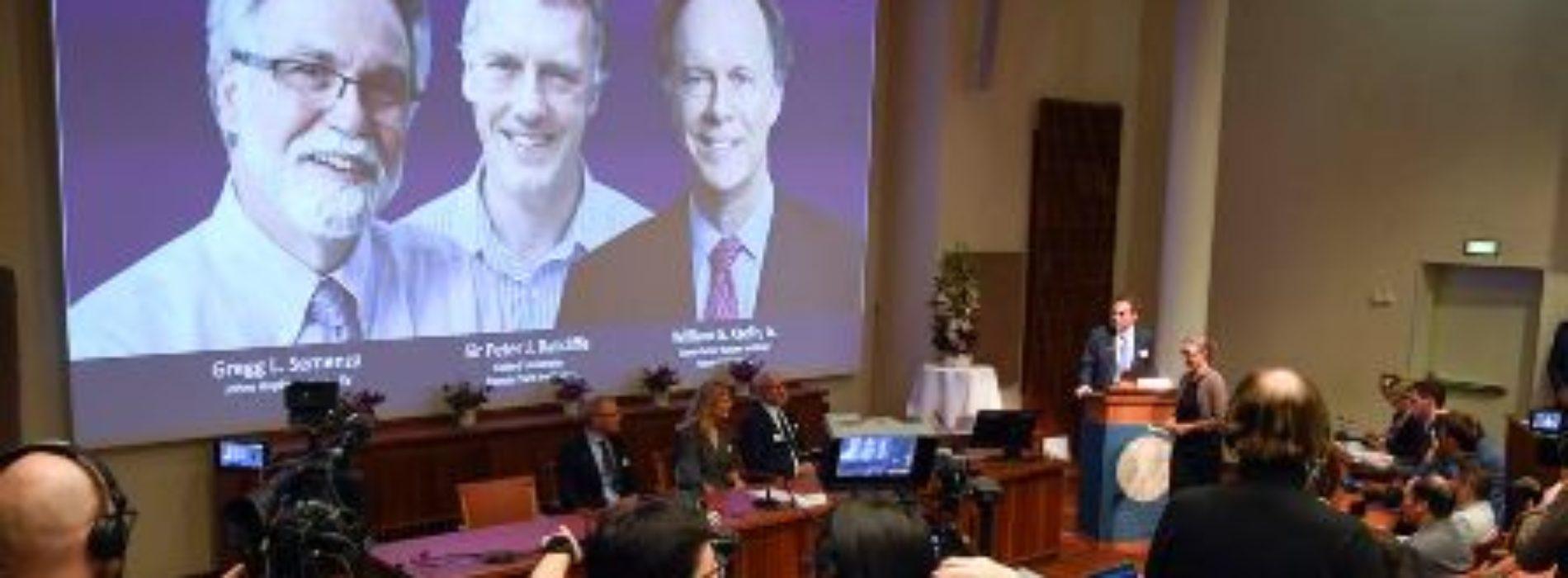 2 Americans, British scientists win 2019 Nobel prize for medicine