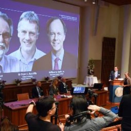 2 Americans, British scientists win 2019 Nobel prize for medicine