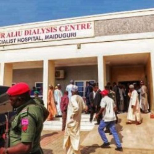 Borno governor orders free dialysis for kidney patients