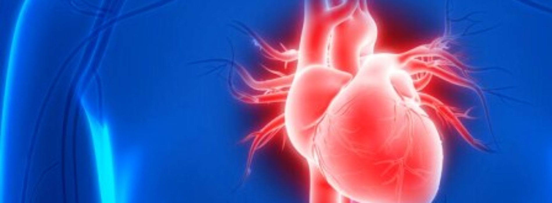 Sex and heart disease: Can your heart take it?