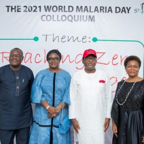 Experts task govts on increased funds for anti-malaria, private sector participation