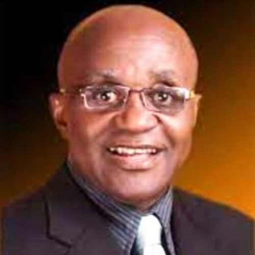 MNP patent holder Kenny Acholonu urges protection for intellectual property as Nigeria fights infant malnutrition